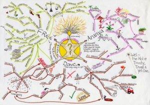 diagrams study