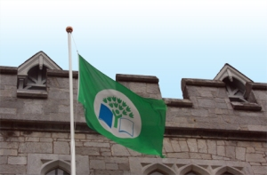 green flag Ireland