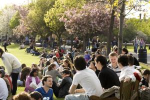 LASA Consider Trinity for Grad School Targeted